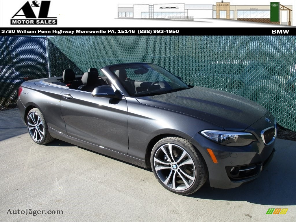 Mineral Grey Metallic Black BMW 2 Series 228i XDrive Convertible