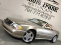 Mercedes-Benz SL 500 Roadster Desert Silver Metallic photo #4