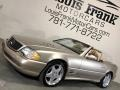 Mercedes-Benz SL 500 Roadster Desert Silver Metallic photo #62