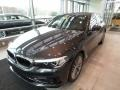 BMW 5 Series 530i xDrive Sedan Dark Graphite Metallic photo #3