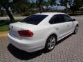 Volkswagen Passat TDI SE Candy White photo #9