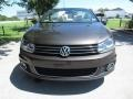 Volkswagen Eos Executive Indium Gray Metallic photo #9