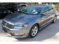 Volkswagen Passat Wolfsburg Edition Sedan Platinum Gray Metallic photo #3