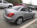 Mercedes-Benz SLK 300 Roadster Palladium Silver Metallic photo #9