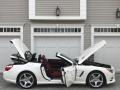 Mercedes-Benz SL 550 Roadster Diamond White Metallic photo #42