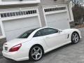 Mercedes-Benz SL 550 Roadster Diamond White Metallic photo #95
