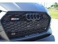 Audi RS 5 2.9T quattro Coupe Daytona Gray Pearl photo #13