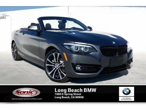Mineral Grey Metallic 2020 BMW 2 Series 230i Convertible