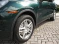 Porsche Cayenne S Jet Green Metallic photo #17