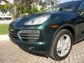 Porsche Cayenne S Jet Green Metallic photo #20