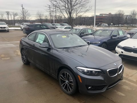 Mineral Grey Metallic 2020 BMW 2 Series 230i xDrive Coupe