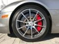 Mercedes-Benz SLS AMG Roadster ALU-BEAM Metallic photo #101