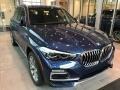 BMW X5 xDrive40i Phytonic Blue Metallic photo #1