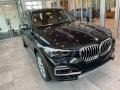 BMW X5 xDrive40i Black Sapphire Metallic photo #1