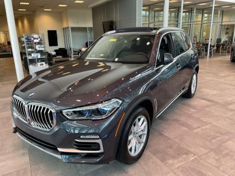 Arctic Gray Metallic 2021 BMW X5 xDrive40i