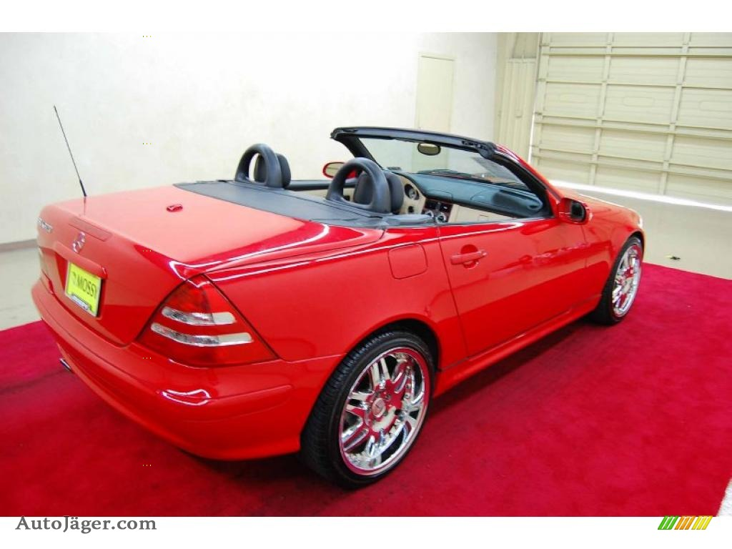2001 mercedes benz slk 320 roadster in magma red photo 5 for Mercedes benz slk roadster for sale