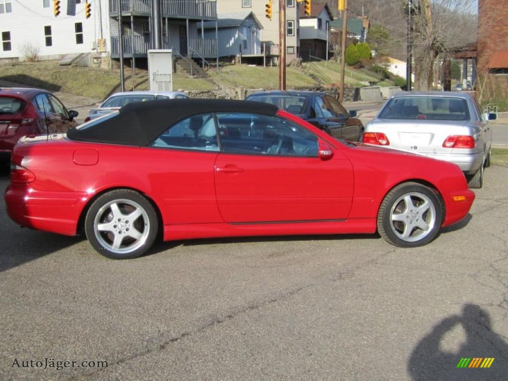 2002 Mercedes Benz Clk 430 Cabriolet In Magma Red Photo 3