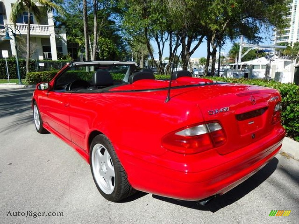 2000 mercedes benz clk 430 cabriolet in magma red 039590. Black Bedroom Furniture Sets. Home Design Ideas